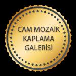 Flexpool - Cam Mozaik Kaplama Galerisi